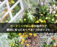 ガーデニング初心者が庭作りで絶対に知っておくべき7つのポイント